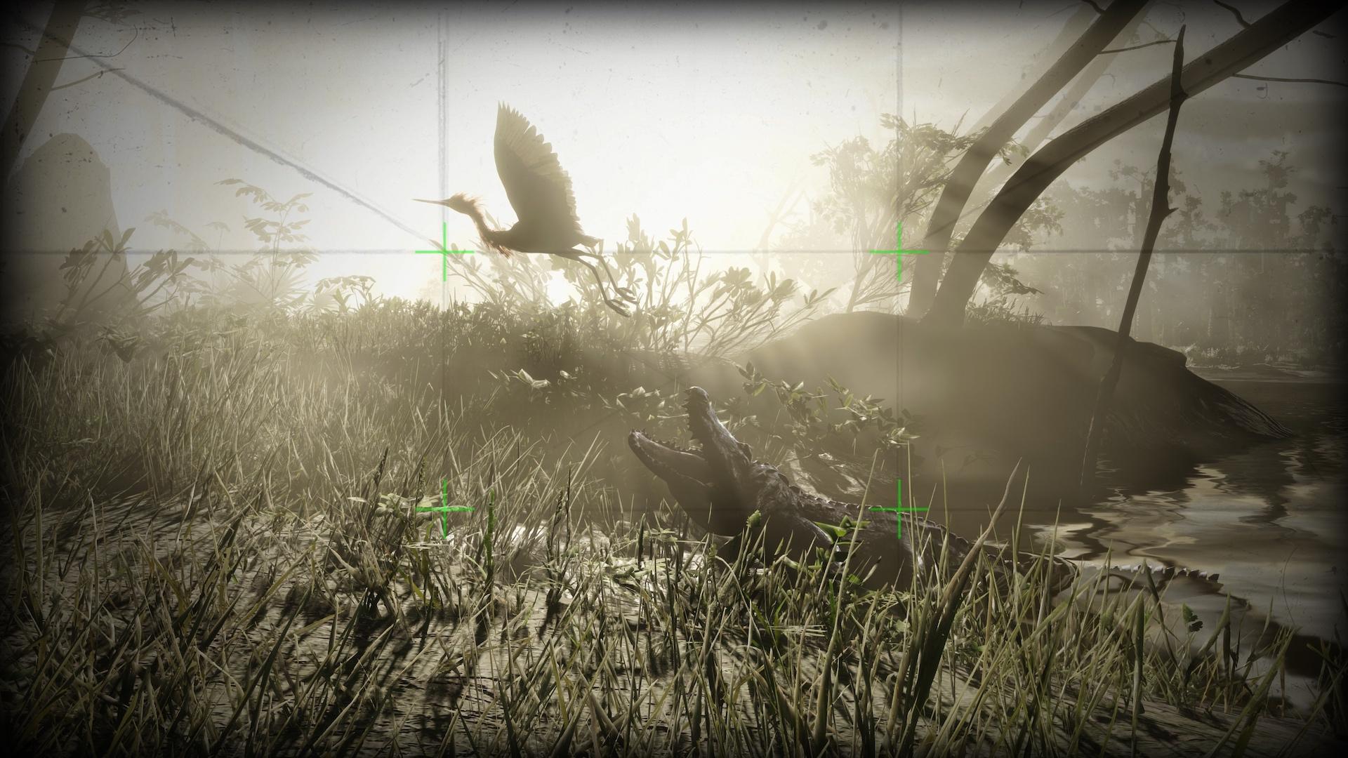 The Naturalist Photo Challenge - Rockstar Games