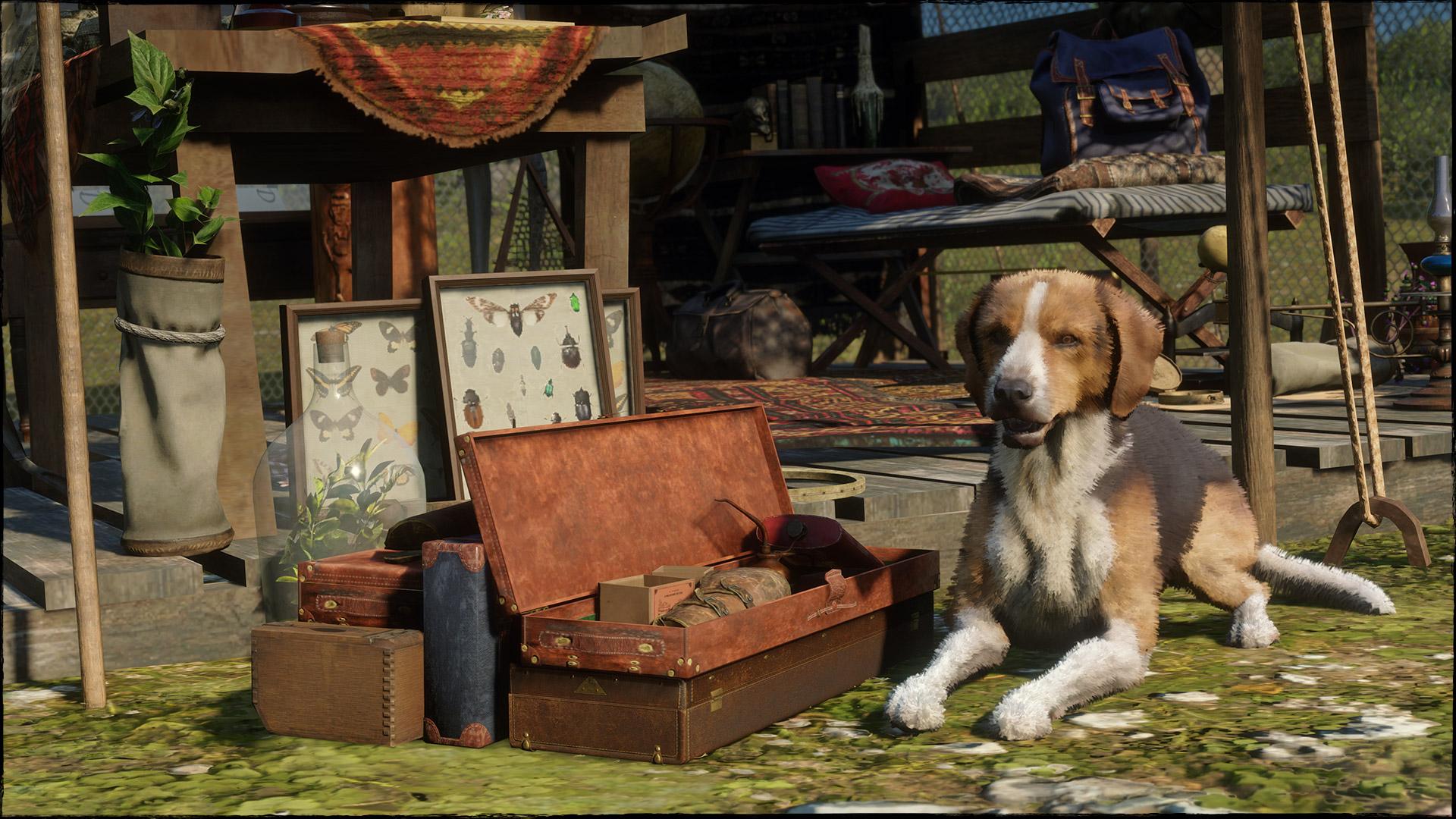 Red Dead Online propose des promotions sur les campements et les rôles